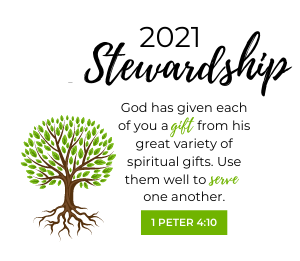 Stewardship Sunday